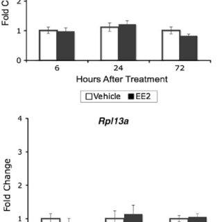 (PDF) Estrogen modulates expression of putative