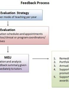 Flowchart of the feedback process also horizontal and vertical integration all four themes across rh researchgate