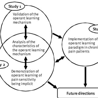(PDF) Implicit Operant Learning of Pain Sensitization and