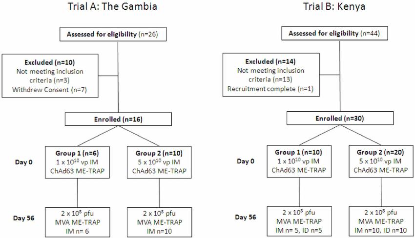 Clinical Trial Designs Trial A  Phase Ib clinical trial