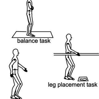 (PDF) Relative Contributions of Balance and Voluntary Leg