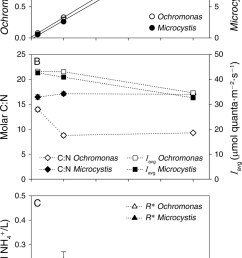 steady state characteristics of the monocultures plotted as function of the nitrogen load  [ 850 x 1538 Pixel ]