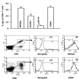 (PDF) Qa-1b and CD94-NKG2a Interaction Regulate Cytolytic
