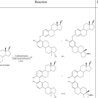 (PDF) Laccase in organic synthesis and its applications