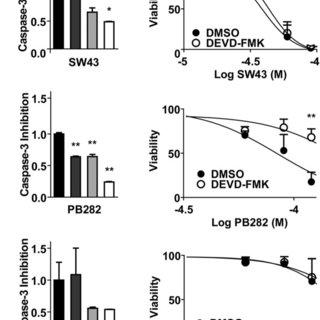 Sensitization to lysosomal membrane permeabilization and