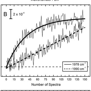(PDF) The Influence of Oxygen on [NiFe]–Hydrogenase
