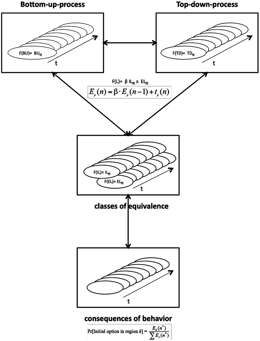 hight resolution of situation model of anticipated response consequences in tactical decisions extended and revised smart er top of the figure bottom up bu and top down