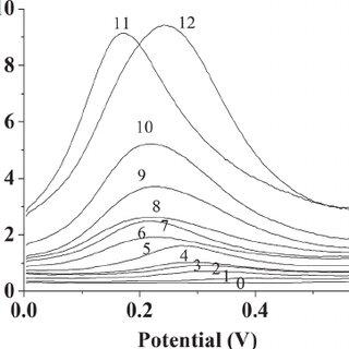 Figure S4. Amperometric response of the AuNP = TiNT = Ti