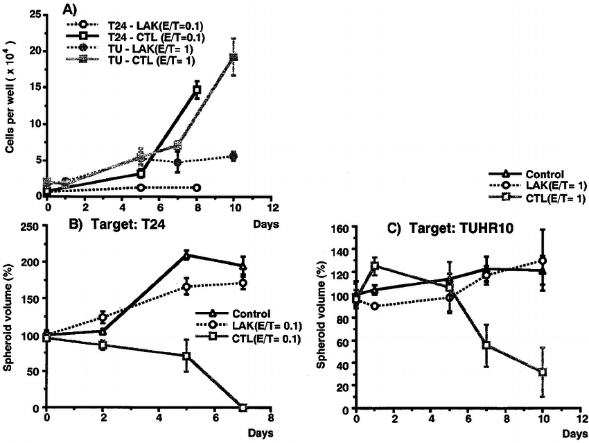 Cytotoxicity of CTL and LAK cells against the tumor