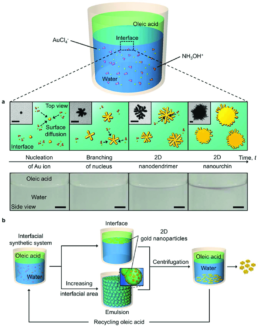 medium resolution of schematic illustrations and an experimental demonstration for our oil water interfacial synthesis of two