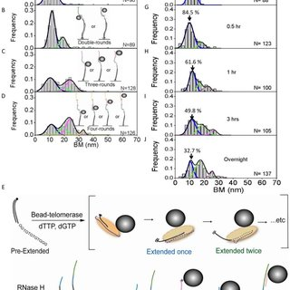 Pif1 helicase requires ∼5 nt ssDNA gap for efficiently
