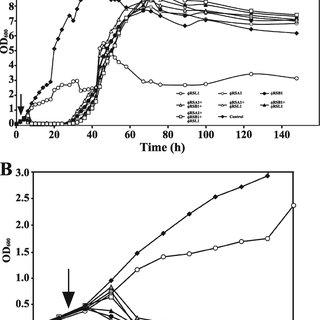 (PDF) Biocontrol of Ralstonia solanacearum by Treatment