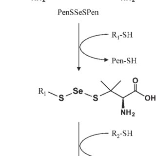 (PDF) A Comprehensive Analysis of Selenium-Binding