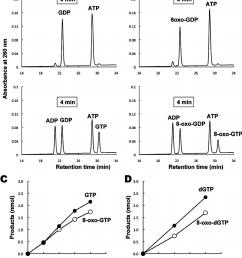 actions of nucleoside diphosphate kinase on nucleoside diphosphates download scientific diagram [ 850 x 988 Pixel ]