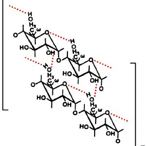 Possible gelatinization mechanism including water