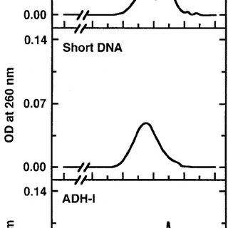 Effect of fibrous DNA on IPSF activity of ADH-I. Fibrous