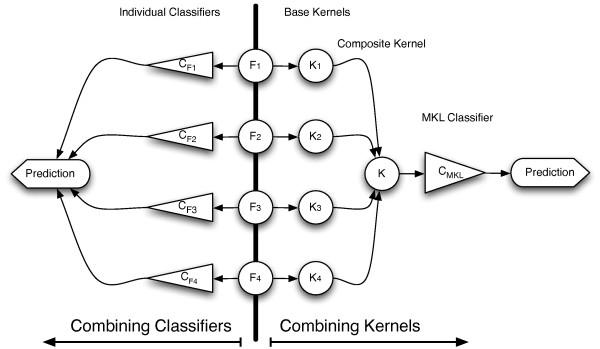 Kernel Methods And Machine Learning : Pursued : A True