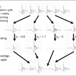 (PDF) Do Listeners Store in Memory a Speaker's Habitual