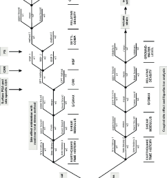 logic tree elaborated for analysis of soil liquefaction 92  [ 680 x 1177 Pixel ]