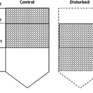 PC-Ord ordination of the Scott Base disturbance trial soil