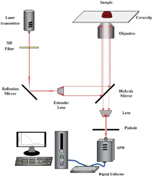 small resolution of schematic diagram of resonance light scattering correlation spectroscopy rlscs