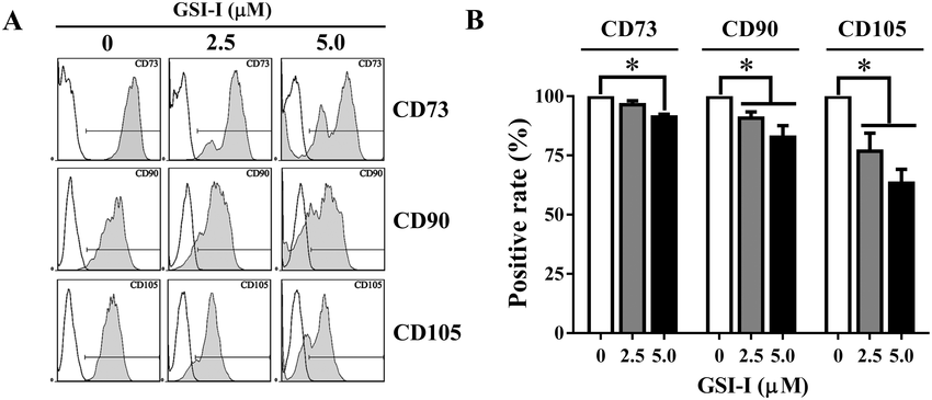 The Notch Signaling Regulates CD105 Expression, Osteogenic