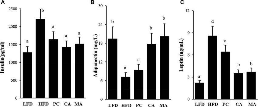 Effects of CA and MA on serum insulin (A), adiponectin (B
