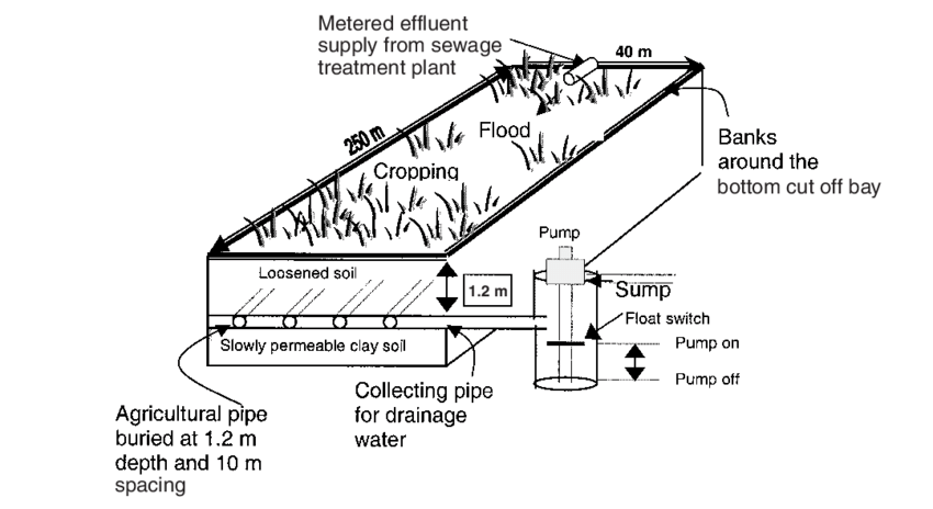 Schematic diagram of a typical FILTER bay. The three