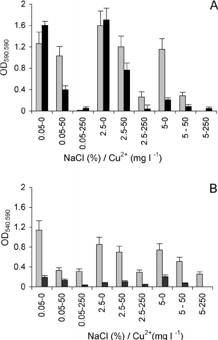 Growth of populations of halotolerant bacteria batch