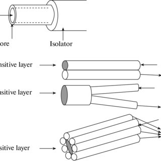 Schematic diagram of a nonnflow optical sensor: the