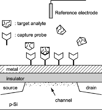 The schematic diagram of the metal-insulator-semiconductor