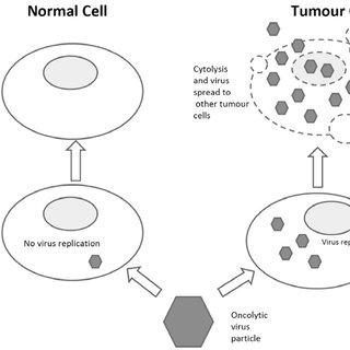 (PDF) Recent Patents Involving Virus Nucleotide Sequences