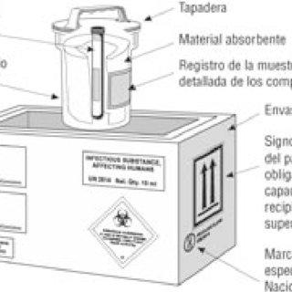 (PDF) Guía Técnica para la importación, exportación y