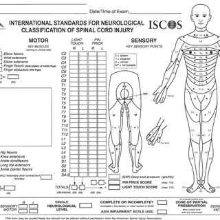 1 (a) Assessment sheet. American Spinal Injury Association