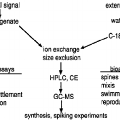 Rotifer Diagram Labeled Gretsch Electromatic G5120 Wiring Bioassay Directed Fractionation Of Chemical Signals