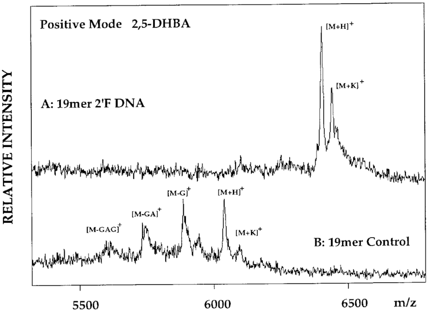 UV-MALDI mass spectra of oligonucleotides in the matrix 2
