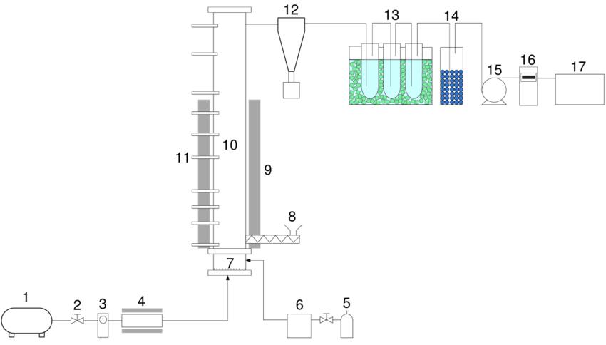 Schematic diagram of low temperature gasification reactor