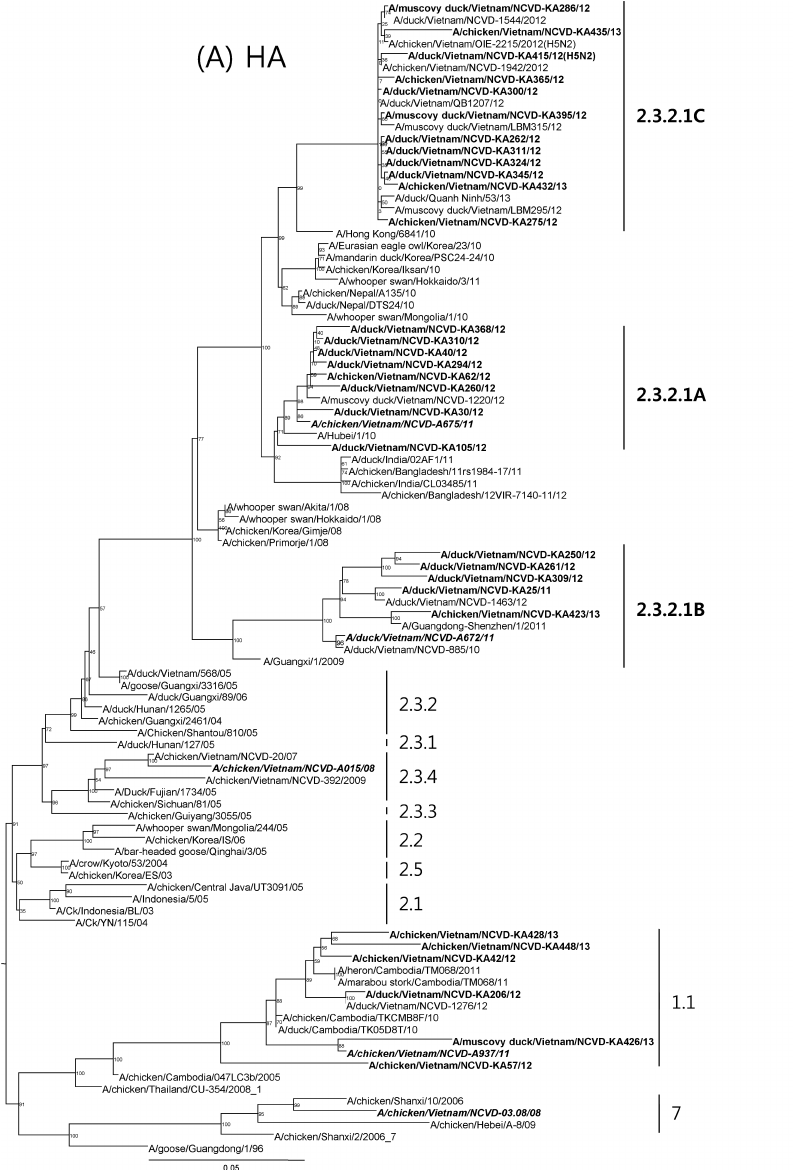 hight resolution of phylogenetic trees for the hemagglutinin ha and neuraminidase na genes from the
