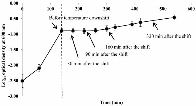 Sakai Wiring Diagram. Wiring. Wiring Diagrams Instructions