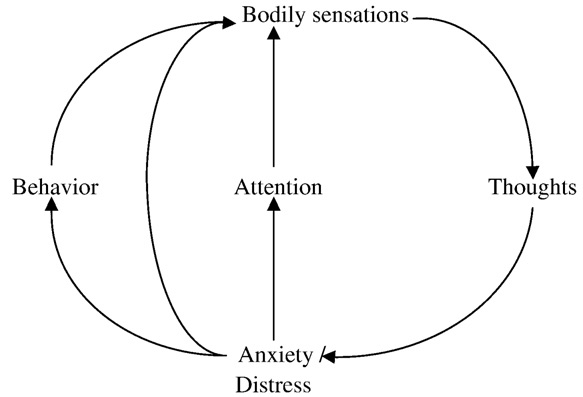 The vicious circle used in the course