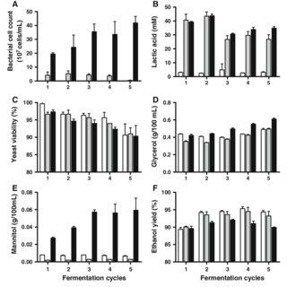(PDF) Homo- and heterofermentative lactobacilli