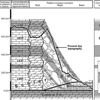 (PDF) The reefal margin and slope of a Middle Triassic