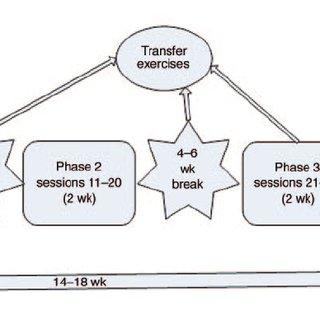 (PDF) Self-regulation of slow cortical potentials: A new