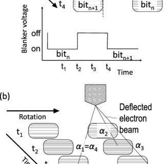 Line doubling process flow with DSA. (a) DSA BCP lines. (b