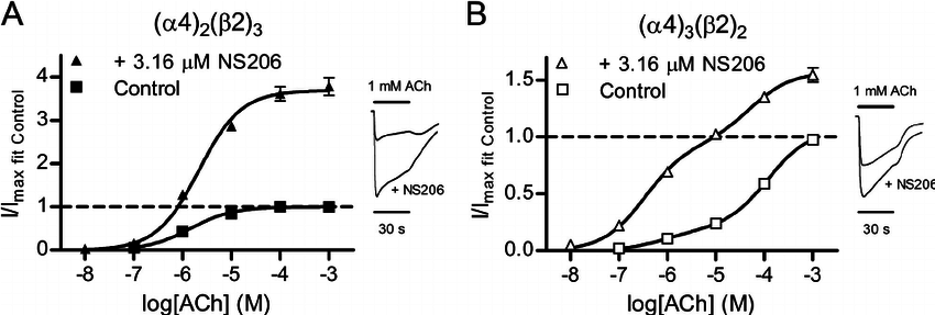 Pharmacological mode of action of NS206 at ␣ 4 ␤ 2