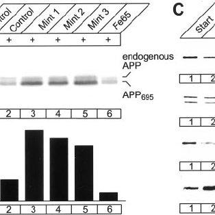 (PDF) Regulation of APP-Dependent Transcription Complexes
