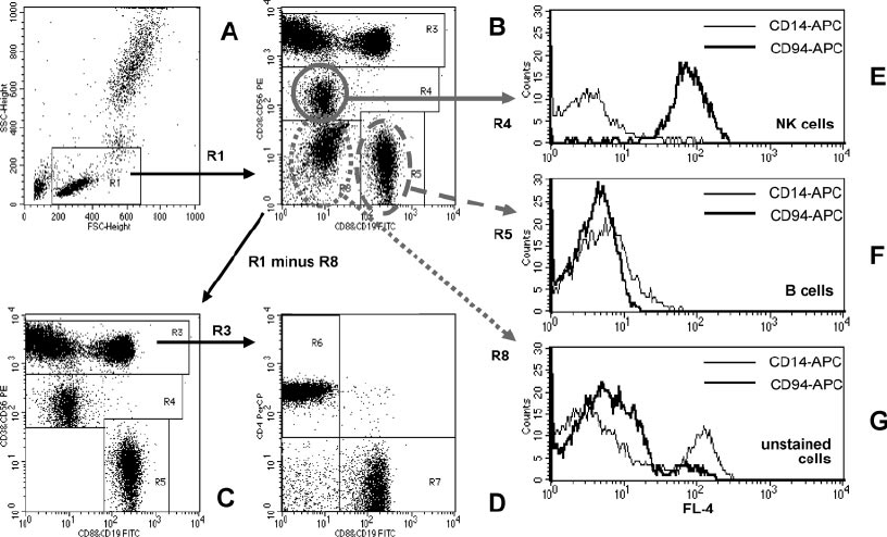 Quantification of peripheral blood lymphocyte subsets by