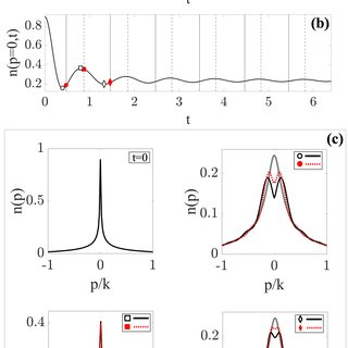 (PDF) Dynamical phase transitions, temporal orthogonality