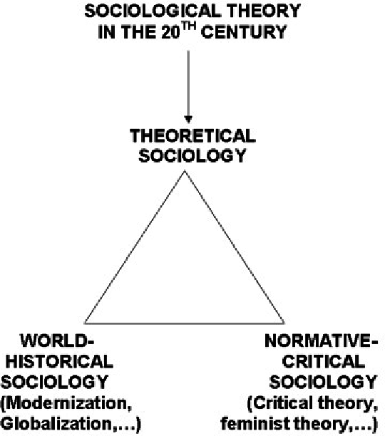 Three Components of Sociological Theory in the 20th