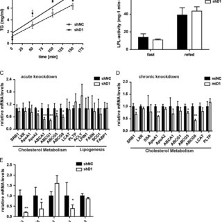 (PDF) Hepatic transforming growth factor-β 1 stimulated